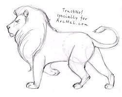 coloring impressive draw lions roaring lion 20b
