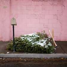 when should you take your christmas tree down christmas ideas