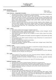 financial resume exles automotive program manager resume sle resume