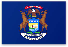 Flag Ir What Do You Think Of This Redesign Of Our State Flag
