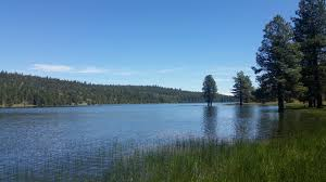 Eagles Nest Va Nursing Home Atlanta Ga Ca Waterfront Properties And Lake Homes For Sale U2013 United Country