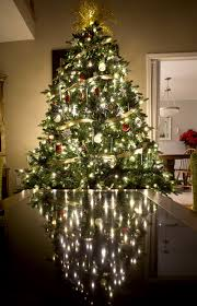 colorfultmas tree themed trees best images on