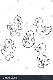 coloring pages five little cute ducklings stock vector 394950121