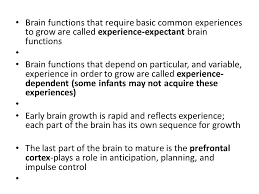 experience dependent brain growth chapter 3 the first two years body and brain head sparing