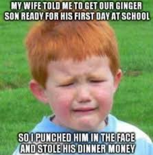 Ginger Meme - ginger meme funny ginger pics and pictures of ginger people