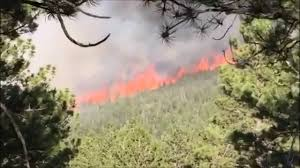Wildfire Northern Colorado by Cold Springs Fire Remains Uncontained In Colorado Youtube