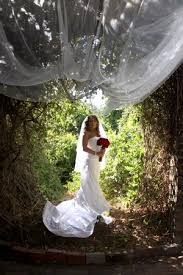 wedding arches cape town 96 best weddings in cape town images on cape town