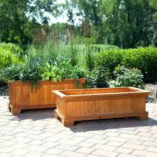 plant pots large u2013 instavite me