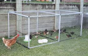 Backyard Chicken Coop Ideas Backyard Chicken Coops Bunnings Diy Chicken Coop Ideas