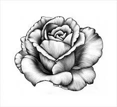 beautiful drawing of flowers 25 beautiful and stunning flower