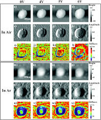 in situ probing behaviors of single linio 2 nanoparticles by