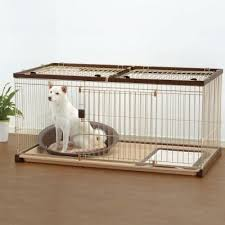 black friday dog crate 55 best images about puppy supplies on pinterest