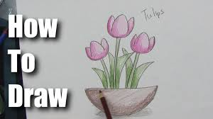 how to draw easy tulips part 2 coloring and shading youtube