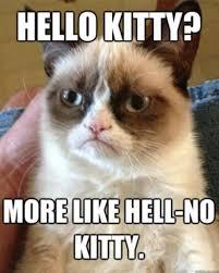 Hello Kitty Meme - 10 best hello kitty is not a cat memes when in manila