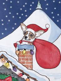 chihuahua cards set of 10 cards 10 envelopes ebay