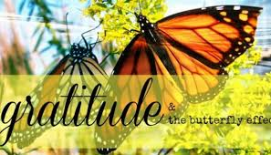 gratitude the butterfly effect move think smile stress relief