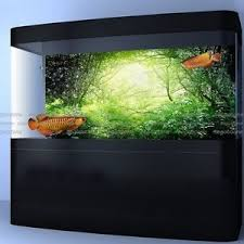 Green Green Forest Aquarium Poster Fish Tank Background PP