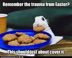 Funny Memes About Monday - rabbit ramblings funny bunny monday meme day