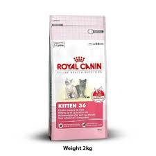 drools kitten ocean fish food 4 kg cat food buy at petshop18 com