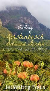 Kirstenbosch Botanical Gardens Visiting Kirstenbosch Botanical Garden A Photo Essay Jetsetting