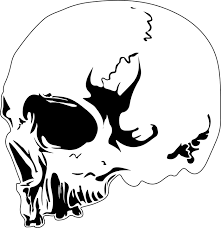 free vector graphic skull design tattoo skeleton free image
