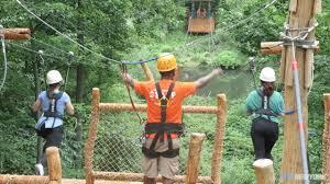 zipline at the bronx zoo u0027s tree top adventure am new york