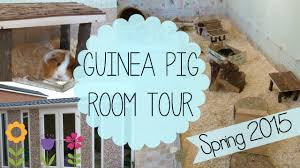 guinea pig room tour spring 2015 youtube