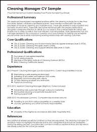 Resume For Spa Manager Cv Example It Cv Example It Cv Examples And Template It Support