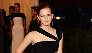 Harry Potter Movies by Emma Watson Harry Potter Movies Free Here