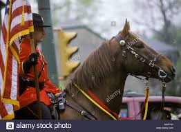 Horse With American Flag Mounted Police Officer On Horse Small Town Parade American Flag