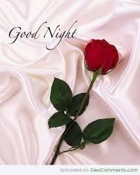 Flower Com Flowers Chocolate And A Good Night U0027s Sleep Good Night Wattpad