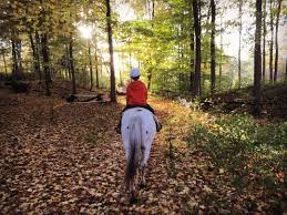fall foliage horseback riding
