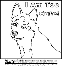 dog color pages printable dogs coloring pages alaskan husky