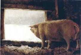 winter pig 1975 jamie wyeth wikiart org