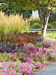 best purple flowers for your garden better homes and gardens