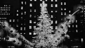 secrets of the rockefeller center christmas tree am new york