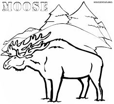 moose coloring pages coloring pages to download and print