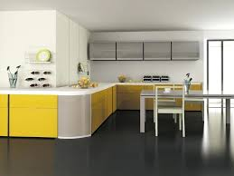 stainless steel kitchen cabinet doors narrow kitchen cabinet with door municipalidadesdeguatemala info