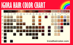 schwarzkopf igora hair color chart ingredients instructions