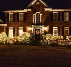 contemporary ideas lights for bushes tips decorating