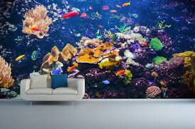 contemporary ideas underwater wall mural sumptuous design tropical fish incredible ideas underwater wall mural awesome design exotic underwater wall mural for your living rooms