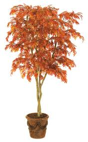 retardant oak and willow trees