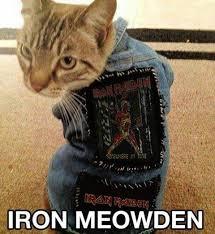 Iron Maiden Memes - fav maiden song meme by lulubest memedroid