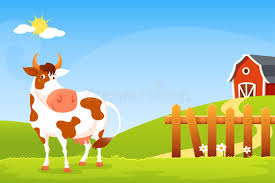 A Cartoon Barn Cartoon Illustration Of A Happy Cow On A Farm Stock Vector Image