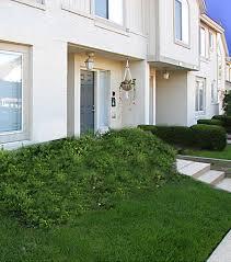 1 2 u0026 3 bedroom apartments in ann arbor briar cove terrace