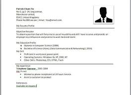 Resume Examples Monster by Simple Resume Examples For Jobs Monster Resume Templates Free