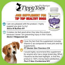 amazon com glucosamine for dogs hip and joint supplement with msm