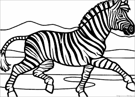 zebra coloring pages free printable zebra coloring pages for kids