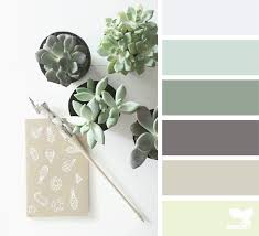 succulents archives page 8 of 11 design seeds