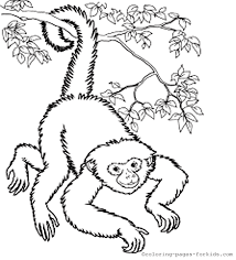 animal coloring pages archives coloring pages kids